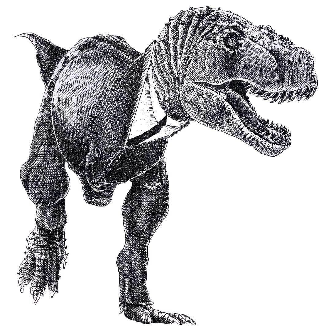 05-T-Rex-Dinosaur-Gaspar-Animal-Stippling-and-Cross-Hatching-B&W-Drawings-www-designstack-co