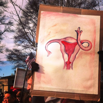 Fallopian Tube Sign, with a message for the GOP  Boston Women's March, January 21, 2017