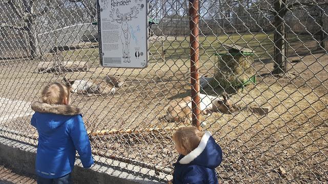 high-park-toronto-zoo