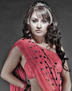Liza Malik Saree 1