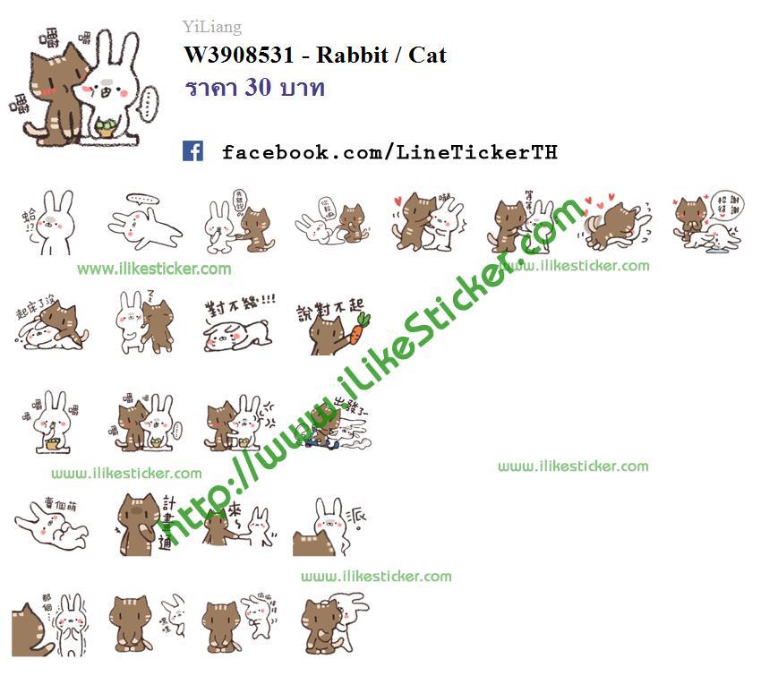Rabbit / Cat
