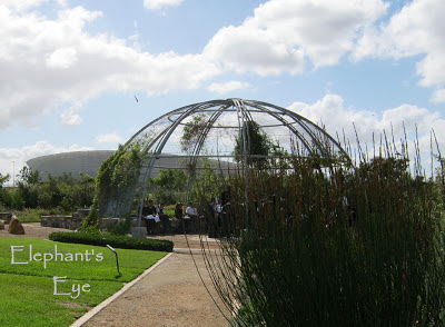 Outdoor classroom at Green Point Biodiversity Garden with the Cape Town Stadium beyond