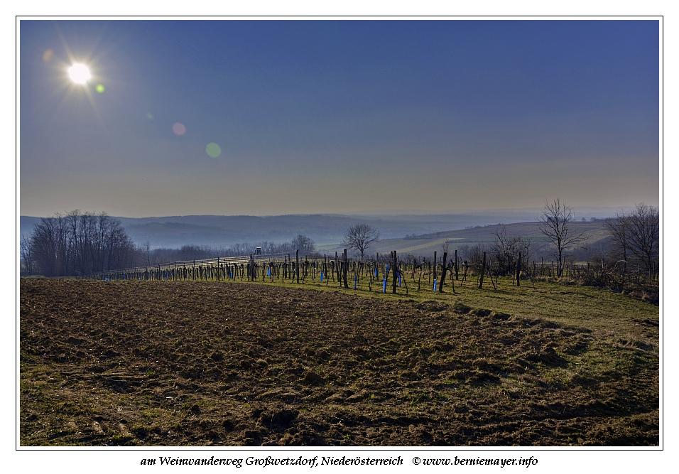 Weinwanderweg Großwetzdorf