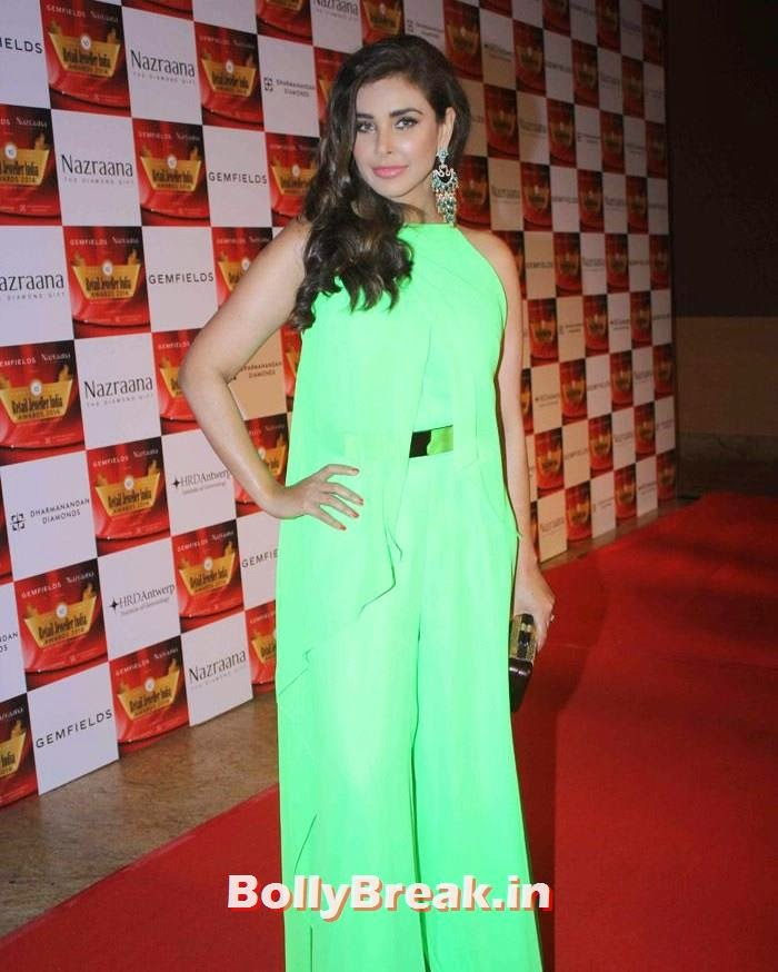 Lisa Ray, Pics of Celebs in Sexy Dresses & Gowns at Gemfields & Nazraana Retail Jeweller India Awards 2014