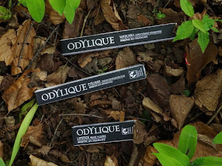 Le maquillage - Odylique