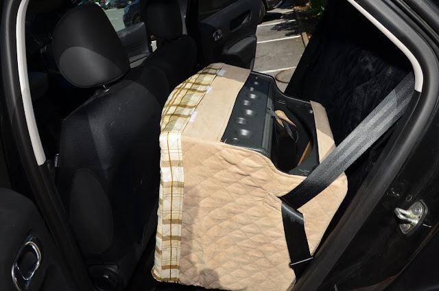 Siège auto pour chien avec coque sécurisée par ceinture de sécurité