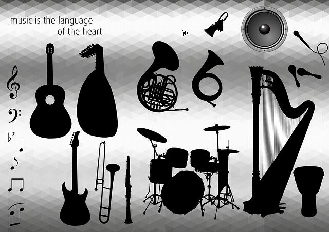 Conociendo los Instrumentos Musicales