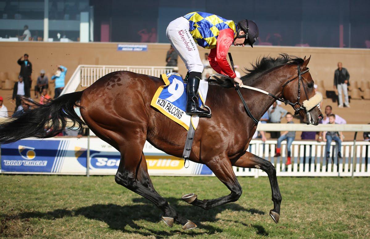 Eyes Wide Open - Horse racing