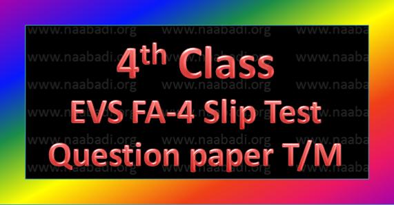 FA-4 4th Class EVS Slip Test Question Paper T/M