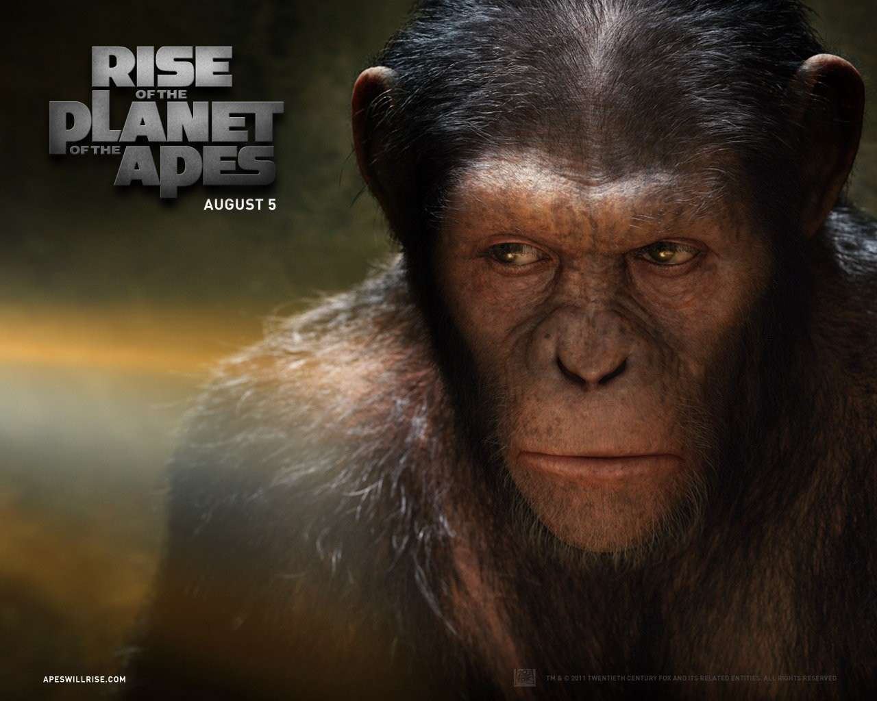 All New Pix1 Planet Of Apes Wallpaper