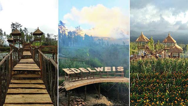 06. Taman Edelweis, Temukus, Karangasem, Bali