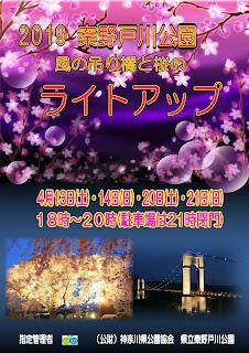 桜と風の吊り橋のライトアップ<4/13、14、20、21>