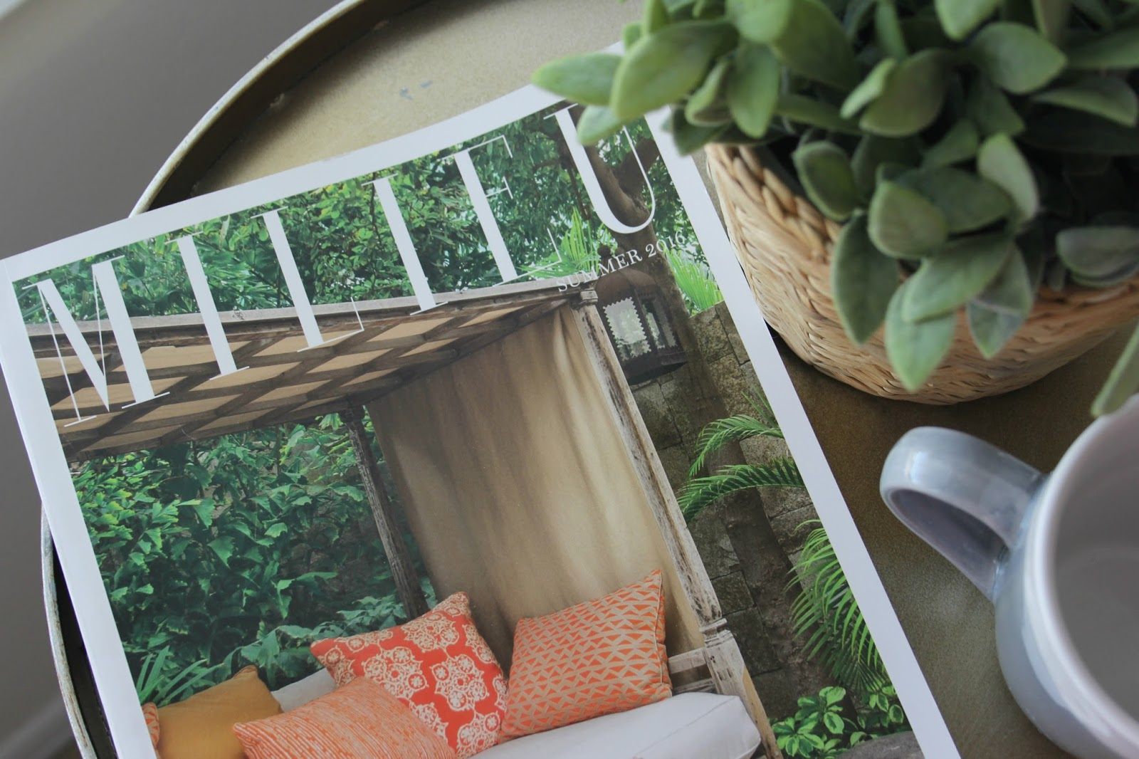 Milieu magazine on tabletop with succulent by Hello Lovely Studio