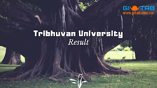 TU Result Published, See the Result with Mark Sheet