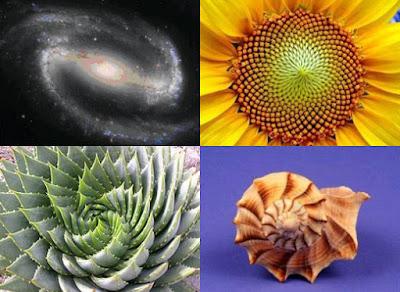 EXPERIENCIAS CERCANAS A LA MUERTE Spirale-aurea