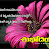 Nice and Cool Good Morning Quotes Pictures Best Telugu Quotations Images