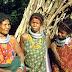 বিলুপ্তির পথে ভারতের ৪২ টি কথ্য ভাষা
