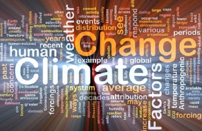 Climate change will endanger many species previously believed not to be at risk says study