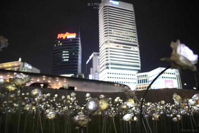 東大門設計廣場LED玫瑰展 동대문디자인플라자