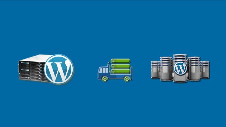 80% off Wordpress Site Migration