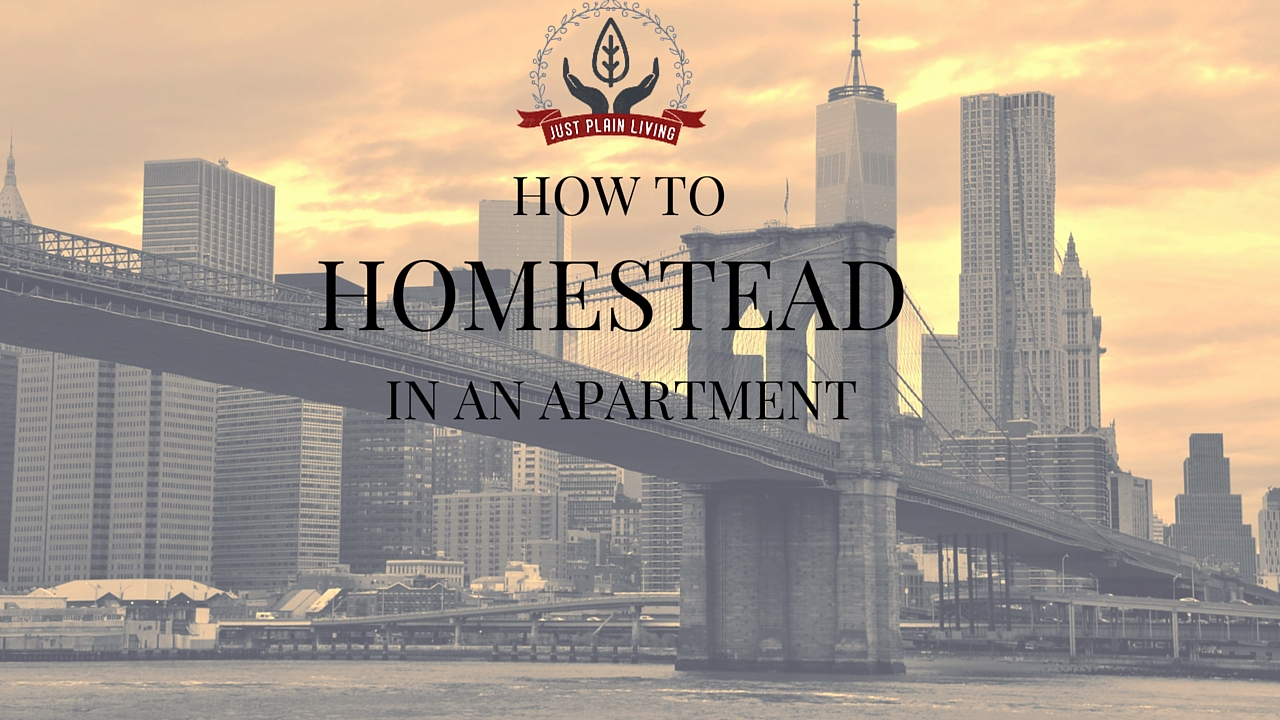 Homestead in an apartment or in an urban house. No matter where you live, get control of your food, energy and other resources!