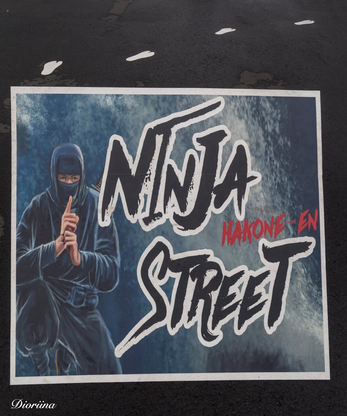 Ninja katu