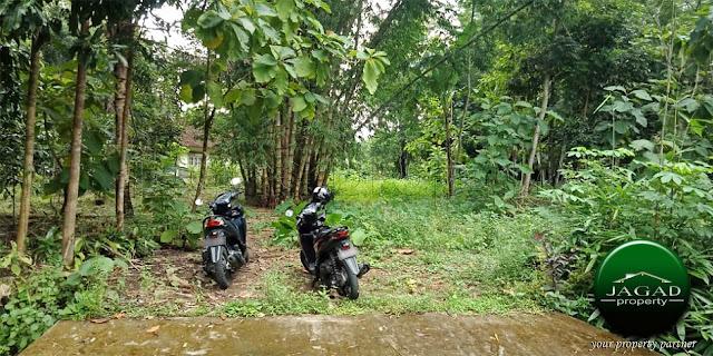 Tanah Kavling di Margoagung, Seyegan