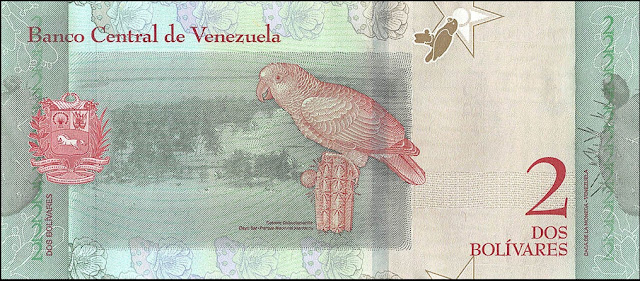 Venezuela Currency 2 Bolivares Soberanos banknote 2018 Yellow-shouldered amazon parrot