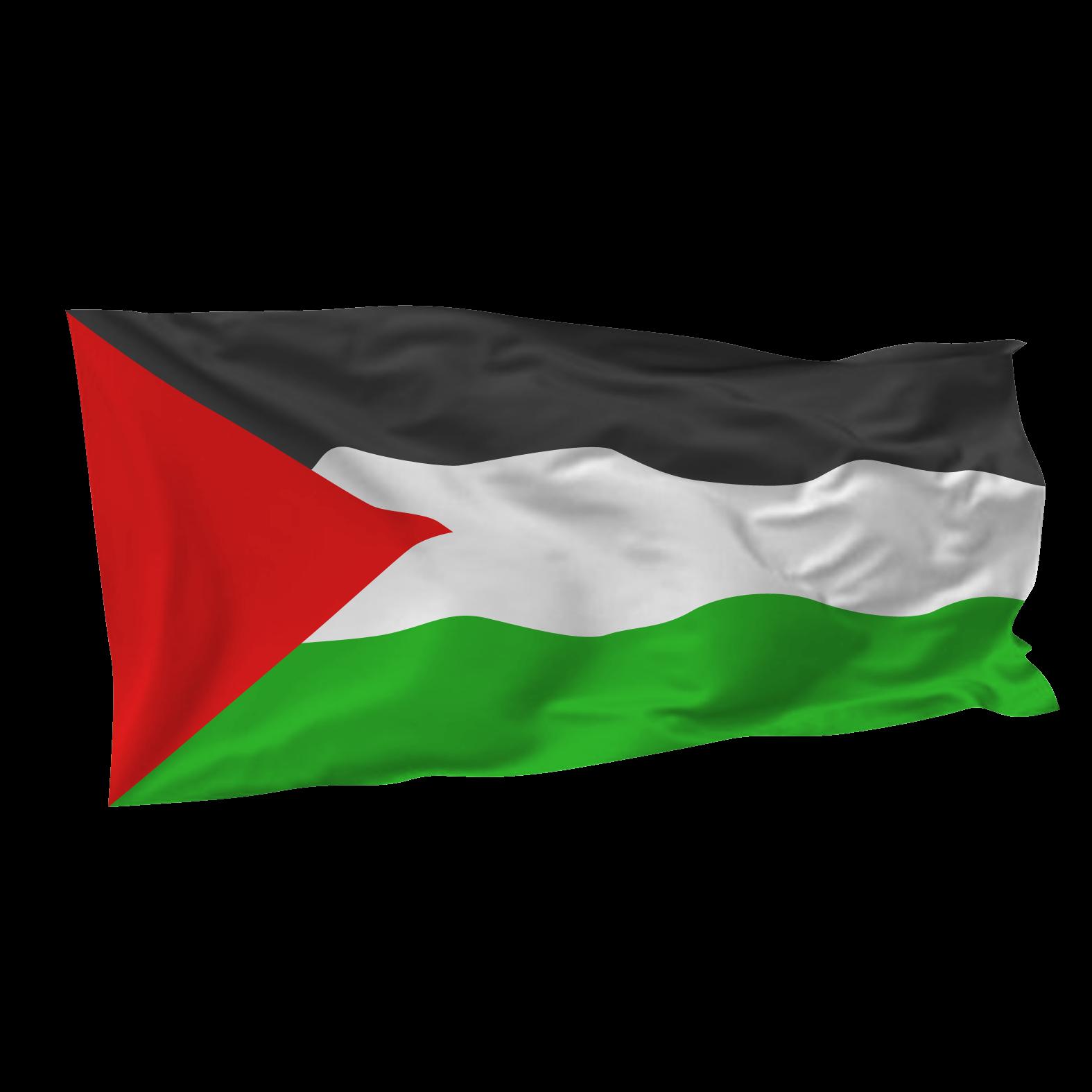 gambar bendera palestina kartun