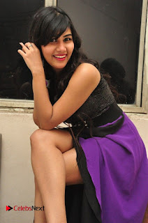 Telugu Actress Rachana Smith Stills at Money is Honey Audio Release  0015.jpg