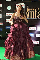Pragya Jaiswal Sizzles in a Shantanu Nikhil Designed Gown  Exclusive 090.JPG