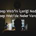 Deep Web'in İçeriği Nedir ? Deep Web'de Neler Vardır ?