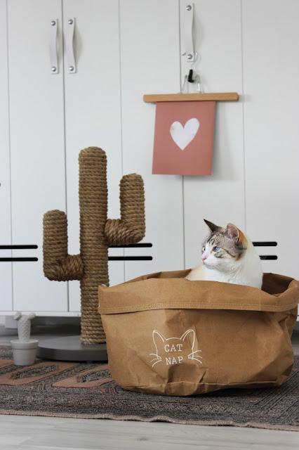 designedbylotte, blog, designed by lotte, hippe kattenspullen, wonen met katten, binnenkijker, magazine