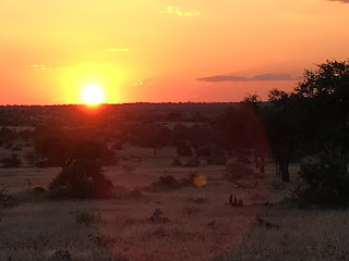 Botswana, ratsastussafari, riitta reissaa, horsexplore