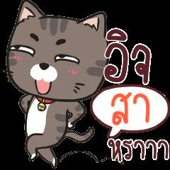 SA3 charcoal meow