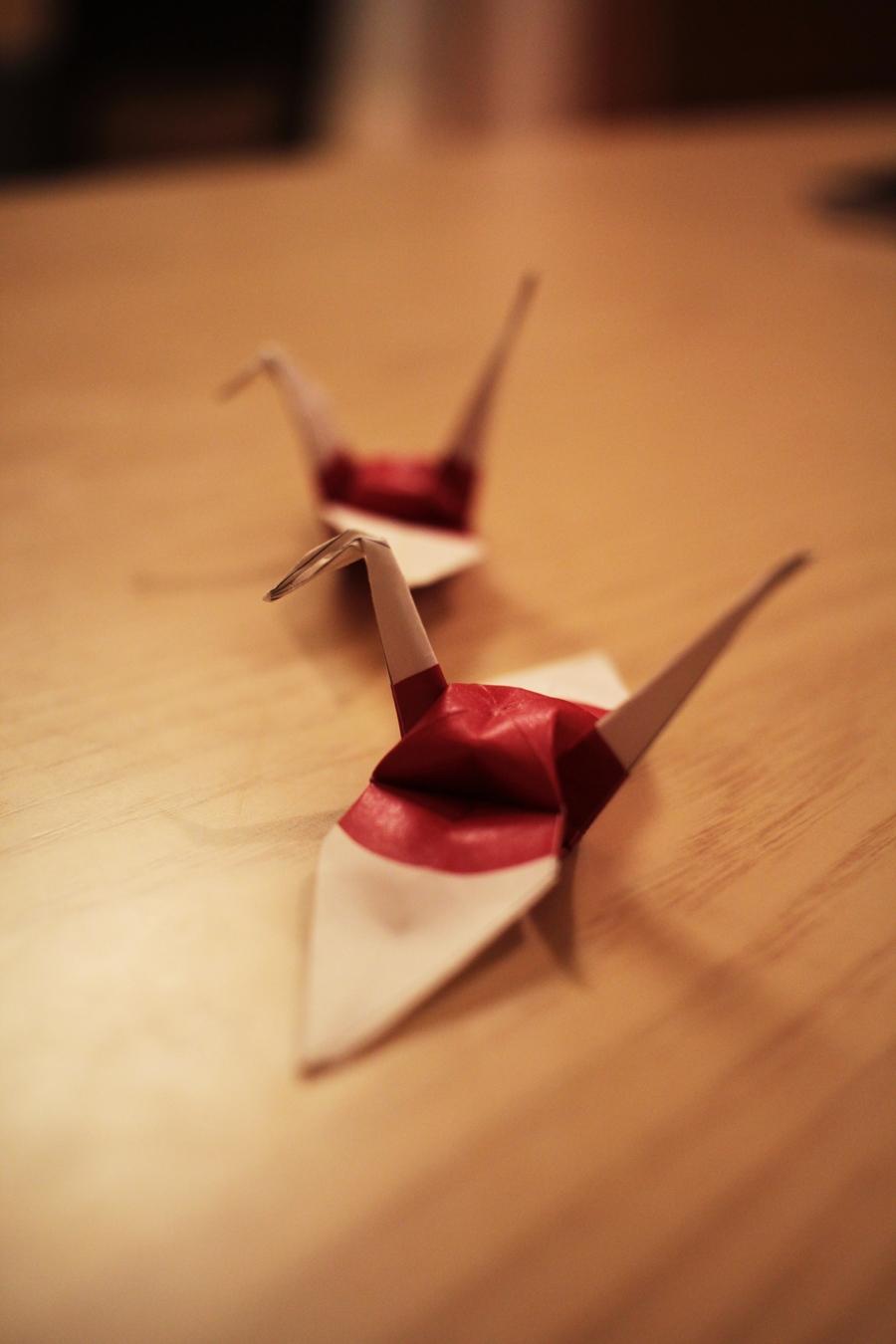 origami lesson how to do diy