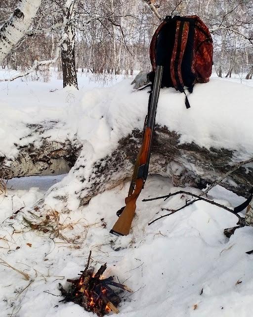 Охота на зайца в Омской области