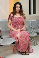 Diksha Panth in a Deep neck Short dress at Maya Mall pre release function ~ Celebrities Exclusive Galleries 070.JPG