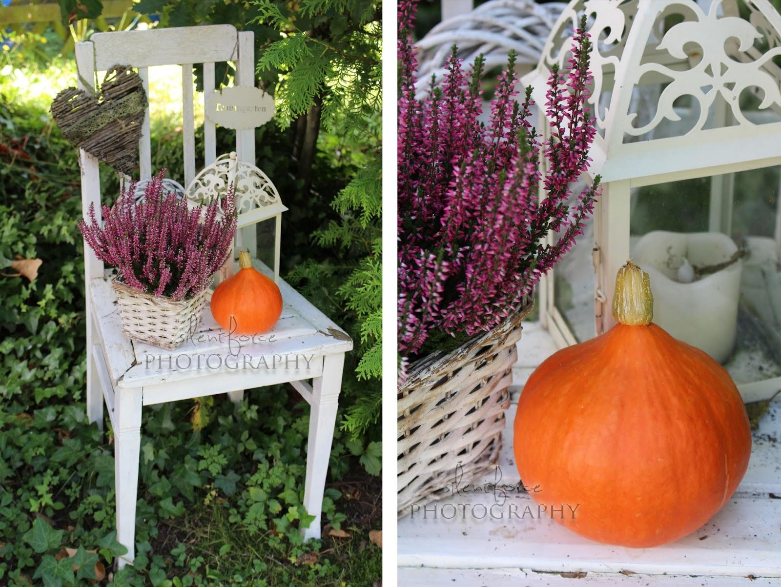 herbstliche deko silentforce garden. Black Bedroom Furniture Sets. Home Design Ideas