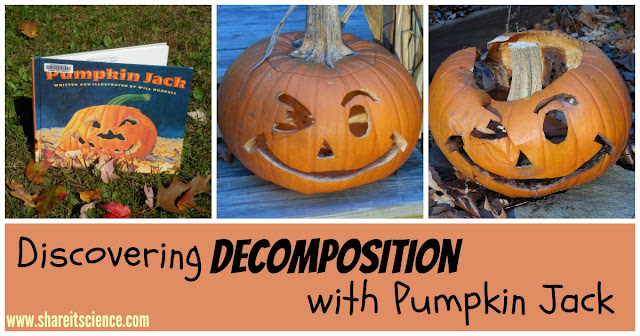 Easy Pumpkin Decomposition Science Experiment