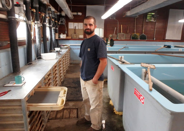 Windswept Adventure: State Fish Hatchery In Chateaugay, NY-Part 2