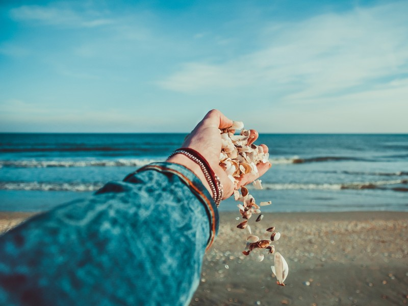 Download Shells in Hand HD wallpaper. Click Visit page Button for More Images.