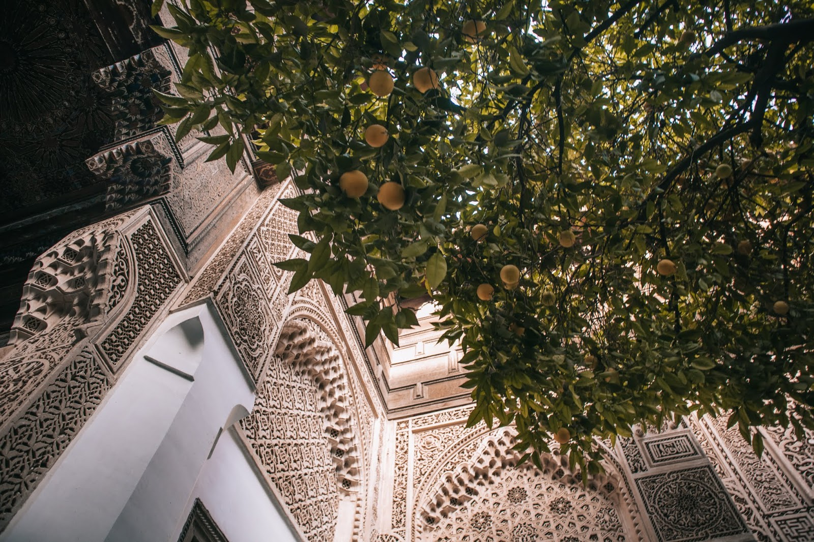 impressions of Marrakesh, Marrakech November 2018, Marrakesh November, Marrakesh travel, Suz and the Sun Travels, Suz & the Sun,  Bahia Palace, Marrakesh Orange tree