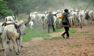 Fulani Herdsmen In Benue State