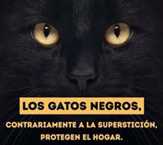 Los gatos negros