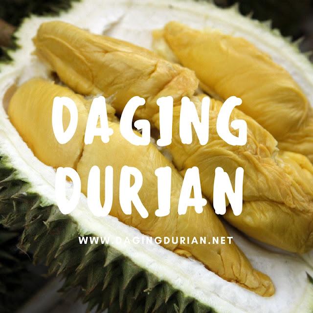 reseller-daging-durian-medan-harum-di-pidie-jaya