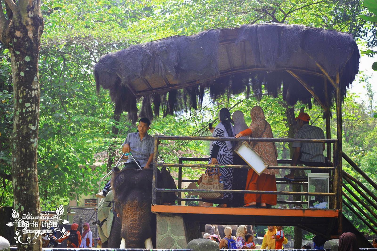 naik gajah di Gembiraloka