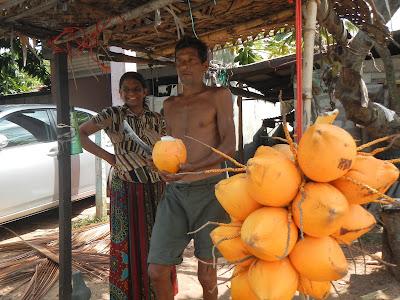 Srilanka Trip Review
