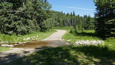 Alberta, Cypress Hills, Graburn Road, Buffalo Trail, landscape