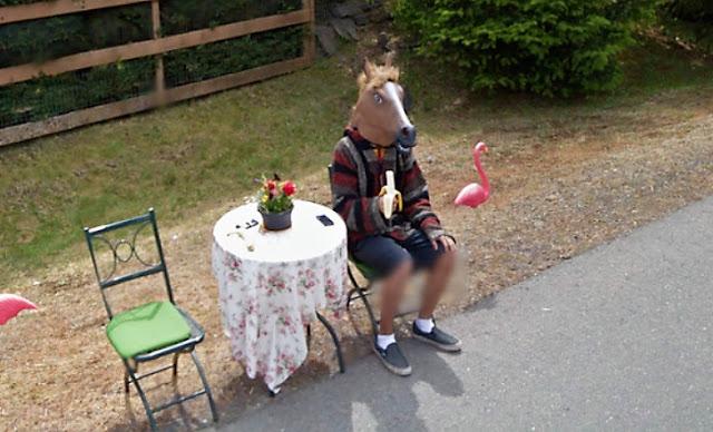 Como assim? uma fantasia de cavalo